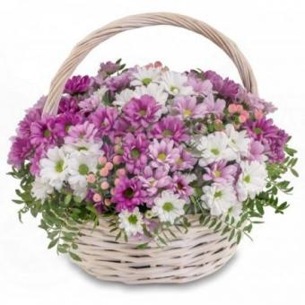 Полянка хризантем